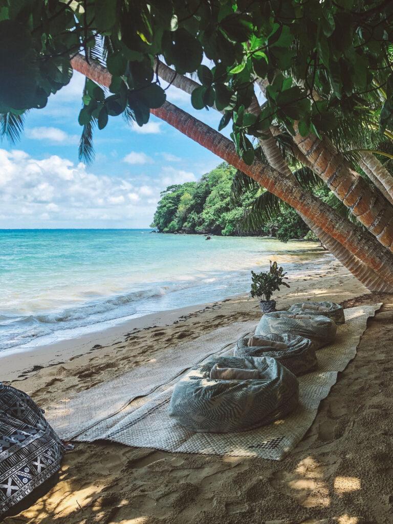 Laucala Island Beach Picnic
